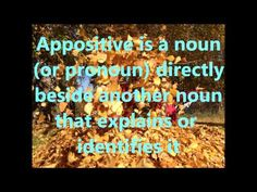 Appositive, CC cycle 2, week 20, English, Classical Conversations - YouTube