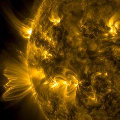 Coronal loops from the sun