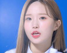 Kpop Girl Groups, Kpop Girls, Pre Debut, Chinese Zodiac Signs, Pop Group, Goddesses, Dancer, Lovers, Songs