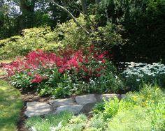 Decorative New England Garden Patio Plantings Ideas