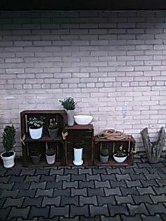 Skrzynki drewniane i kwiaty ogrodowe lub domowe, w doniczkach białych oraz odcieniach szarości plus donica ręcznie robiona z materiału w cemencie