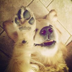 high five and good night. - @ciscolo- #webstagram