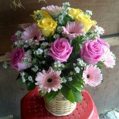 Selamat Datang Di Blog Toko Bunga Kami Menjual Berbagai Jenis Potong Dan Hias Berkualitas Tropis Import