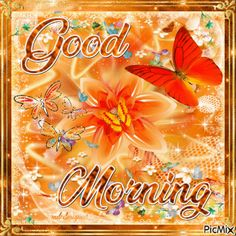 Butterfly Good Morning Gif morning good morning good morning quotes good morning gifs good morning gif good morning images good morning quotes and sayings good morning animation good morning animated quotes Good Morning Gif Funny, Good Morning Gif Animation, Good Morning Animated Images, Good Morning Coffee Gif, Good Morning Sunday Images, Good Morning Happy Thursday, Good Morning Roses, Good Morning Cards, Good Morning Picture