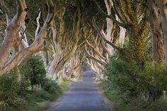 Irlanda © Ansa