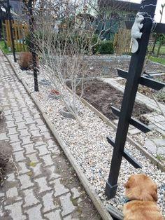 [Tagebucheintrag] Ab ins BEET ? Das können wir auch! Gartenumgestaltung