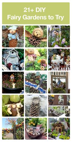 Start your own fairy garden!