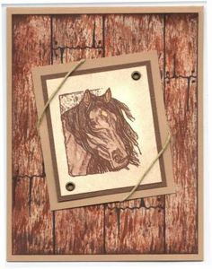 STAMPIN' UP! EQUESTRIAN DREAMS, RETIRED