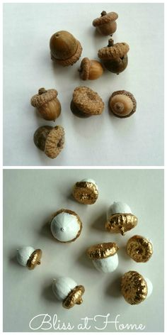 The best DIY projects & DIY ideas and tutorials: sewing, paper craft, DIY. Diy Crafts Ideas DIY painted acorns for fall. Nature Crafts, Fall Crafts, Holiday Crafts, Crafts For Kids, Diy Crafts, Fall Projects, Diy Projects To Try, Craft Projects, Acorn Crafts