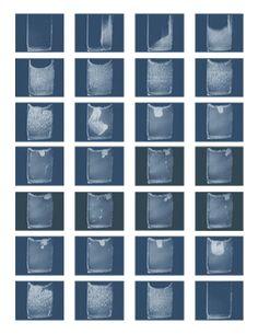 Citroid: Artworks by Michael Joaquin Grey Self Organization, Organizing, Bio Art, Muscle Contraction, Grey, Artist, Artworks, Gray, Artists