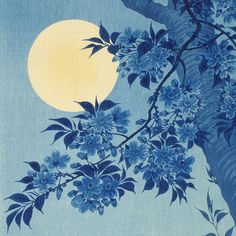 "Los Angeles County Museum of Art στο Instagram: ""#bluemoon vibes  [Ohara Shōson (Koson) (Japan, 1877-1945), Blossoming Cherry on a Moonlit Night (detail), circa 1932, Gift of Mr. and Mrs. Felix Juda] #lacma"""