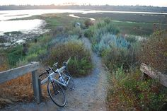 Cycling in Back Bay, Newport Beach, CA