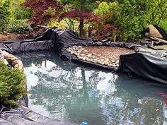 Resultado de imagem para lagos ornamentais passo a passo