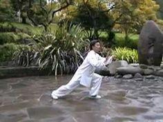 Swimming Dragon Taiyi: Li Yong Liang