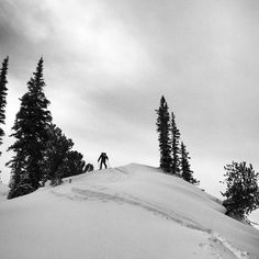 Seldin #wasatch #utah #backcountryskiing #alta #surfaceskis