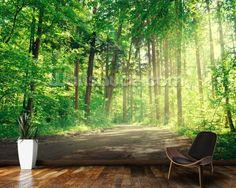 Forest Track Sunlight wallpaper mural room setting