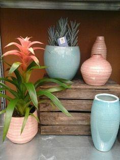 Nieuwe trend voorjaarspotten #voorjaar #pastel #turquoise #oudroze #karelhendriksen #tuincentrum #KH_TC