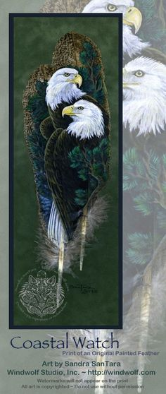 More Pins for your board Feathers