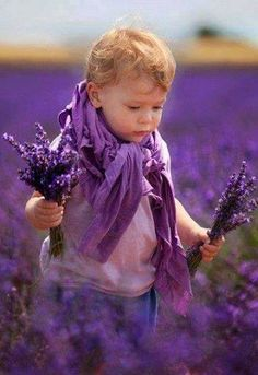 In the lavender haze of the field nearby, Gisella saw young Andre was already gathering sweet lavender for her...