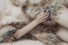 www.anlestudio.com --- Cullen romance