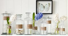 Store & display  shells in a stoppered glass jar - no more dust! Going to  do  this ASAP