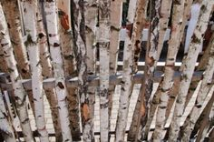 Picture of a piece of colourful and unusual birch fence stock photo, images and stock photography. Fence Gate, Fences, Birch Logs, Garden Fencing, Beautiful Gardens, Candles, Stock Photos, Texture, Wood