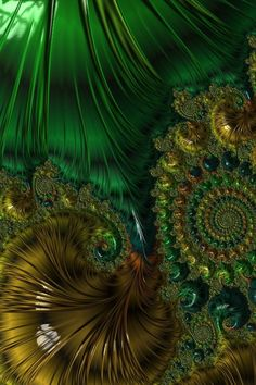 green feathers and ammonites Fractal Design, Fractal Art, Wallpaper Backgrounds, Wallpapers, Fractal Geometry, Diy Wall Painting, New Media Art, Magic Eyes, Water Reflections