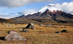 "Cotopaxi is a beautiful volcano in the Andes, the centerpiece of Ecuador%u2019s Cotopaxi National Park. You%u2019ll see Cotopaxi (which is active from time to time) and other significant stops in the Andes on an Exotic Ecuador and Peru tour, which also includes a stop at Peru's iconic Machu Picchu, the ""lost city"" of the Incas. (From: 23 Amazing Photos of Ecuador & the Gal�pagos)"