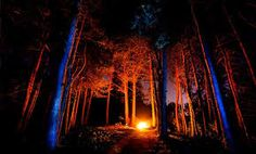 Image result for creepy campfire forest game