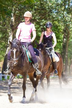 Donnybrook 21 December 2014-21 | Flickr - Photo Sharing! December 2014, Bed And Breakfast, Riding Helmets, 21st, Africa, Horses, Animals, Animales, Animaux