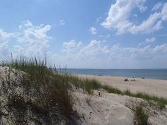 First Landing State Park, Virginia Beach, VA - so much more appealing than the crowds at the resort strip.