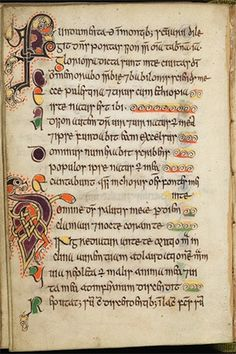The Celtic Psalter is described as Scotland's Book of Kells. The pocket-sized book of Psalms is housed at the University of Edinburgh, where it went on public display in 2009 for the first time. Medieval Books, Medieval Manuscript, Illuminated Manuscript, Illuminated Letters, Book Of Kells, Hallstatt, Celtic Art, Celtic Runes, Celtic Mythology