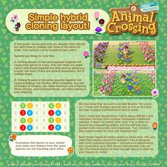 """""""Second guide is an optimized (and very pretty! If you don't plan to have friends watering bonuses, you can just have one. Animal Crossing Guide, Take Me Up, Garden Guide, Animal Games, Colorful Garden, New Leaf, Layout, Simple, Flowers"""