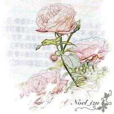 今年も、西武ドームで「国際バラとガーデニングショウ」が始まった✨ 画像は去年行ったときの写真を加工したもの。 #flower #rose #seibu_dome #tokorozawa #saitama #japan - @noel_izu- #webstagram