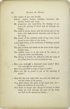 Beautiful words by Walt Whitman