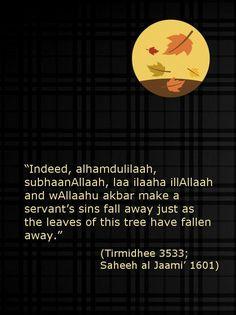 Autumn Trees, Autumn Leaves, Hadith In English, Fall Away, Dry Leaf, Deen, Worship, Allah, Islamic