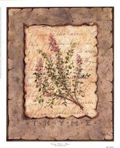 Vintage+Herbs+-+Thyme+at+FramedArt.com