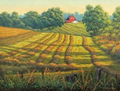 """Summer Cut Hay - Hall-Perrine Cancer Center Commission by Hans Olson Oil ~ 20"""" x 24"""""""