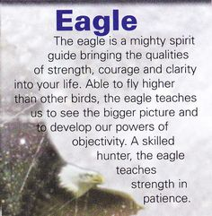 Eagle spiritual guide