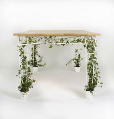 Plantable table jailmake