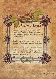 Acorn Magick