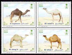 Arabia Saud.