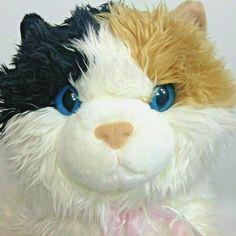 "Aurora Calico Cat Plush Kitten JUMBO Esmeralda Flopsie Stuffed Animal 28"" Kitty #Aurora Dog Bean Bag, Fox Stuffed Animal, Realistic Stuffed Animals, Sleeping Kitten, Plush Animals, Daily Deals, Pet Toys, Awesome Stuff, Cute Cats"