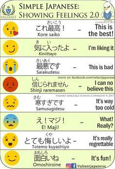 Meaning of the Emoticons