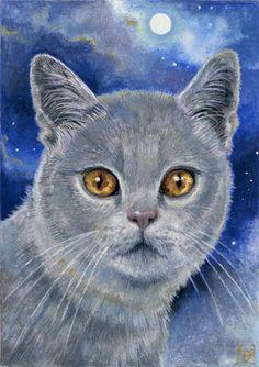 """""""Moon cat"""" by Danuta Mayer"""