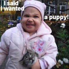 I said I wanted a puppy!!