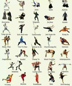 Which ones have you trained?! I do taekwondo and bjj #martialarts #fitwarriorsmartialarts