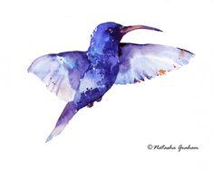 Blue bird watercolour