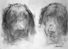 http://ginnygrayson.com/dog-2013.html