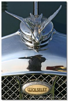 Wolseley Hornet Special, 1934 - hood ornament and badge Car Badges, Car Logos, Vintage Cars, Antique Cars, Vintage Auto, Car Symbols, Car Bonnet, Car Hood Ornaments, Radiator Cap